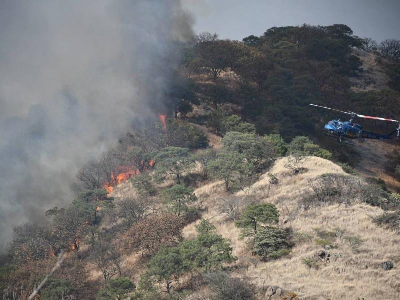 Participan 140 brigadistas contra incendio forestal en La Primavera