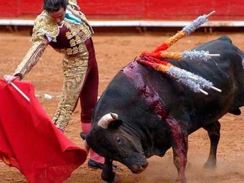 Partido Verde contra corridas de toros en CDMX