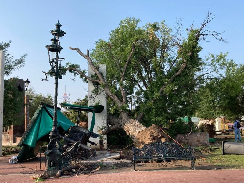 Pega tromba a Nuevo Laredo; deja daños severos
