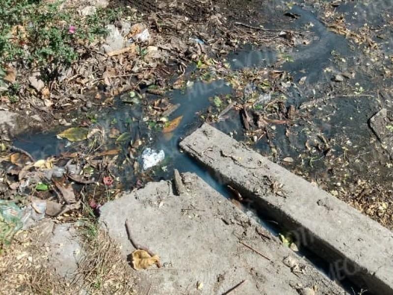 Sin atención fugas de aguas negras en Salina Cruz