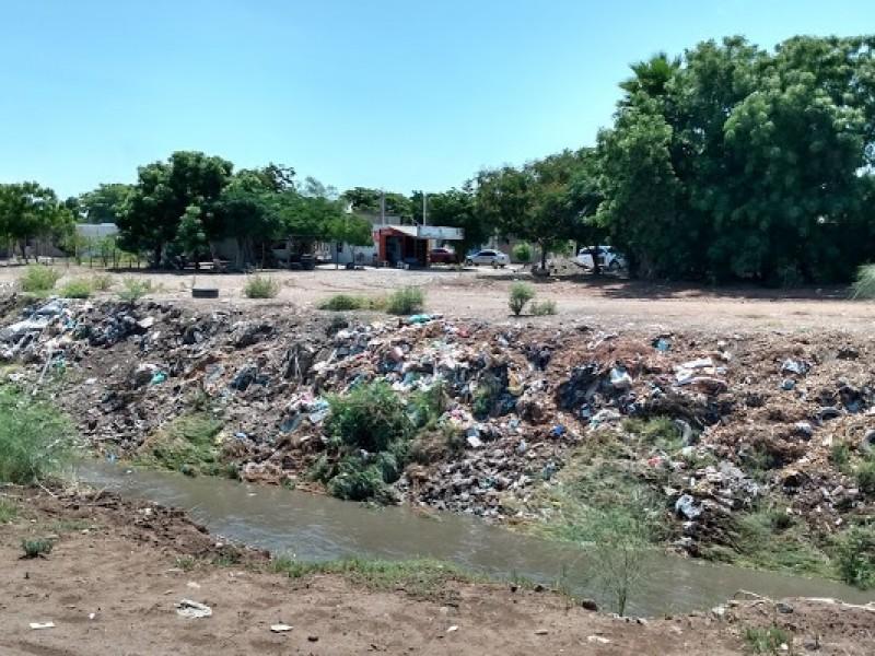 Persiste significativas cantidades de basura en drenes