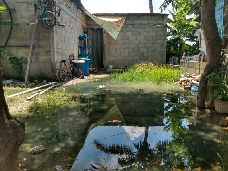 Persiste sin atención fuga de aguas negras
