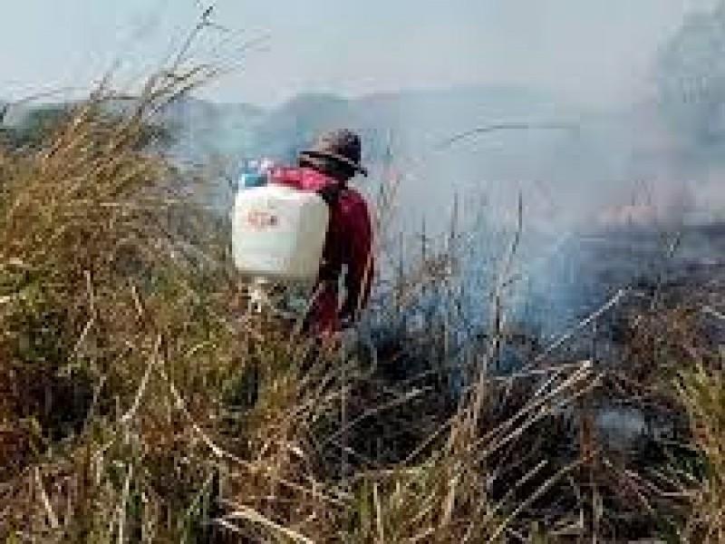 Persisten cinco incendios forestales en Chiapas