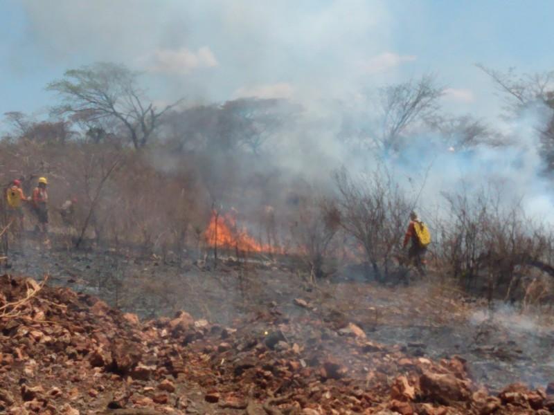 Persisten incendios en la capital chiapaneca