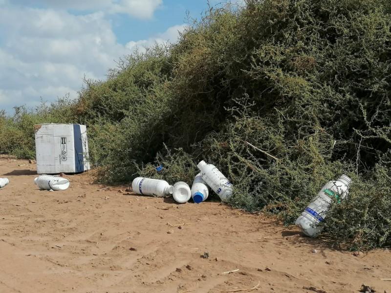 Persisten malas prácticas en uso de agroquímicos