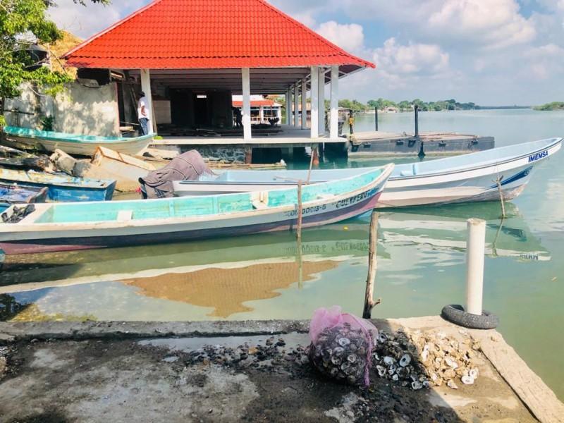 Pesca sin futuro, no hay captura