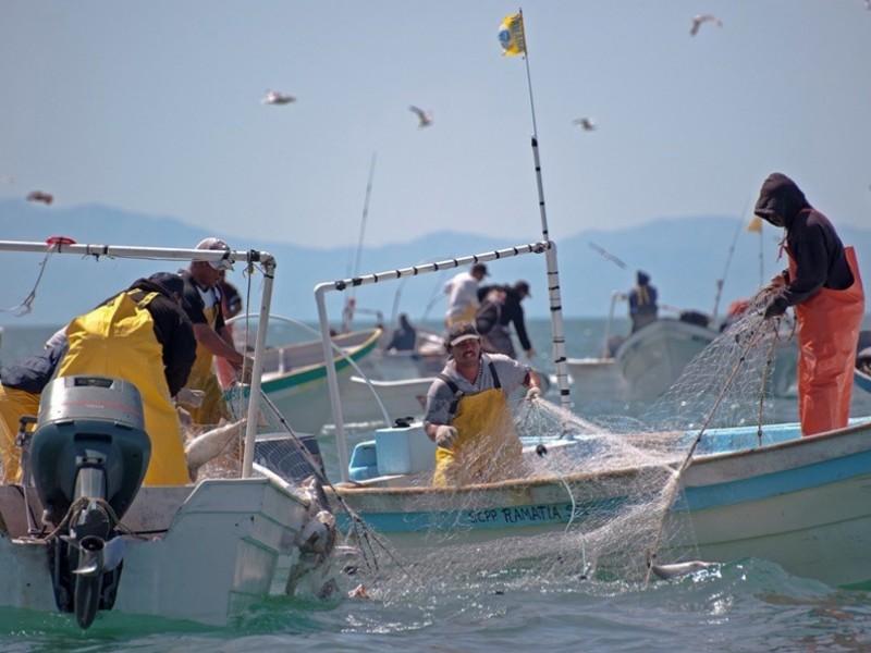 Pescadores buscarán amparo
