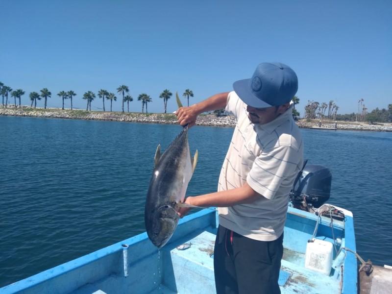 Pescadores de Los Cabos Expresan Necesidades