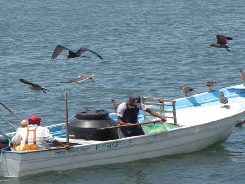 Pescadores denuncian extorsiones dentro de la CONAPESCA