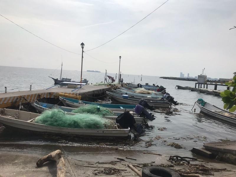 Pescadores presentan afectaciones por nortes y lluvias