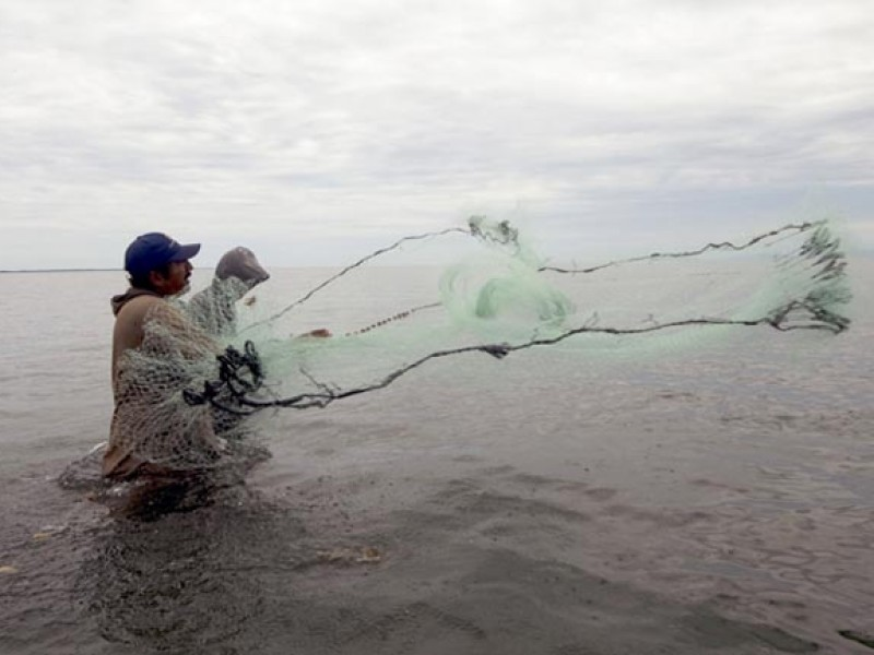Pescadores regresan a la actividad productiva