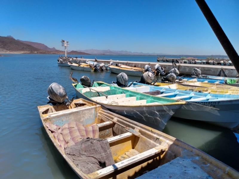Pescadores se preparan para temporada de jaiba