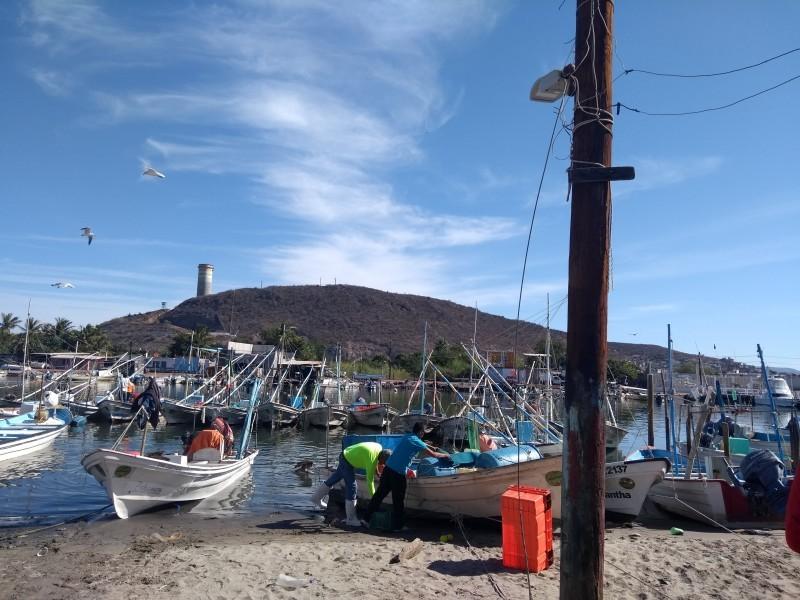 📹Pescadores voltean hacia un pesca sustentable