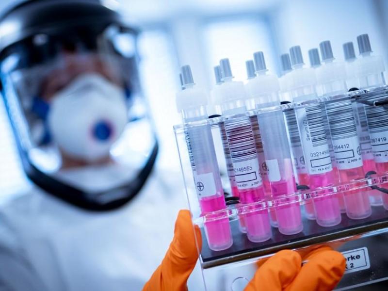 Pfizer prevé tener resultados finales de vacuna Covid-19 en octubre