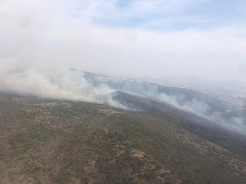 Piden ambientalistas judicializar incendios en zonas protegidas