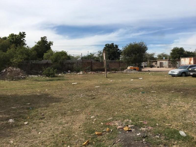 Piden atención a solares baldíos en Prados del Valle