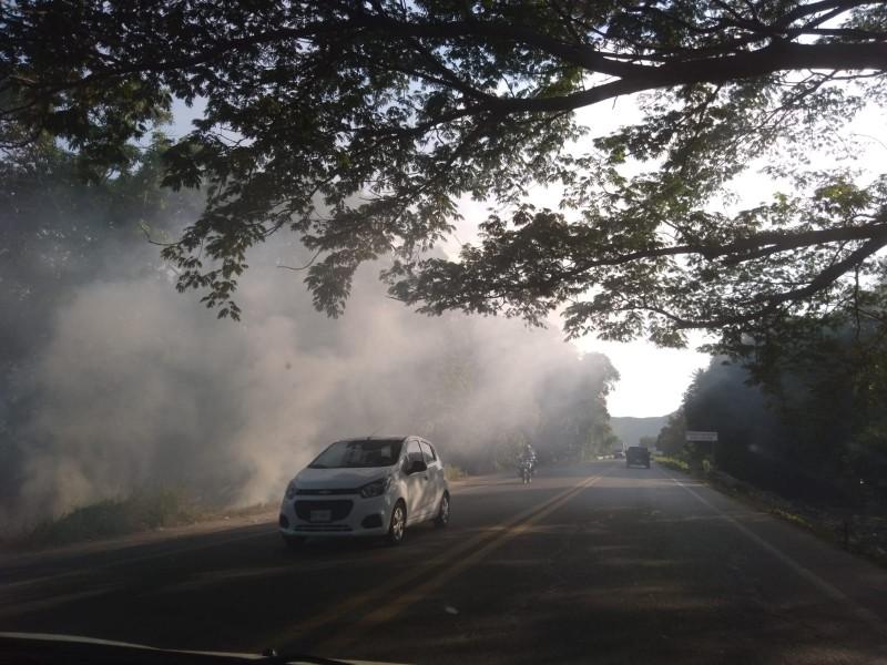 Piden atención a tala y quema de árboles en Tehuantepec