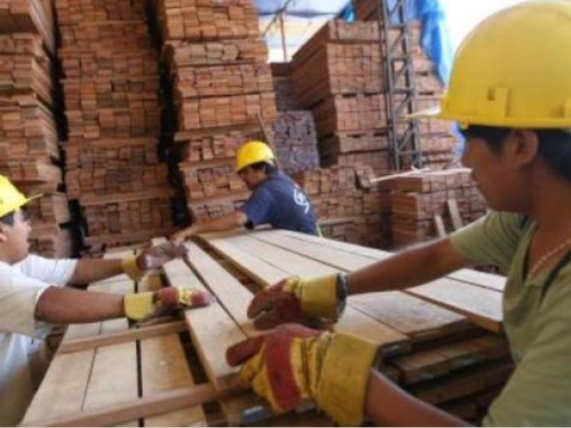 Piden atender industria maderera