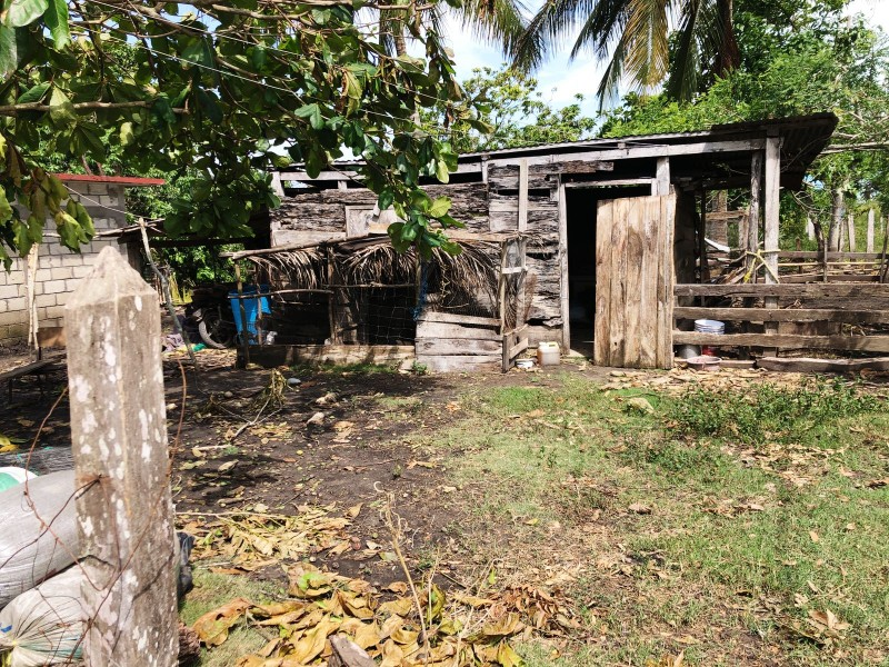 Piden ayuda para población vulnerable damnificada