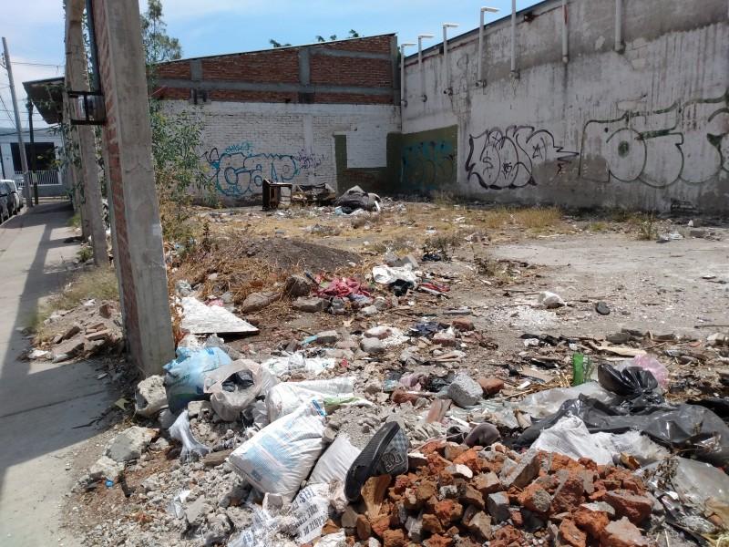 Piden bardear lote baldío en La Carmona