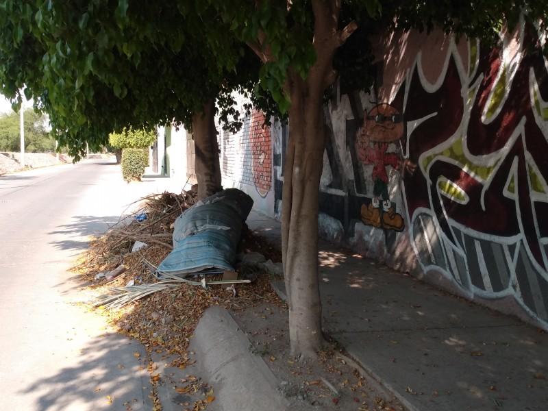 Piden dar mantenimiento y retirar desechos en Arroyo Alfaro