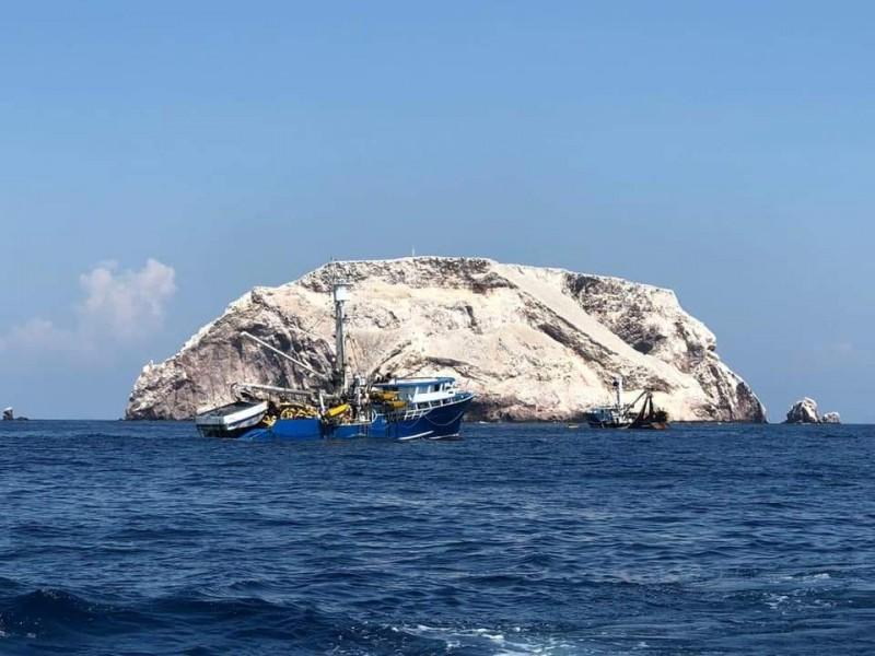 Piden freno a pesca comercial en zona natural protegida