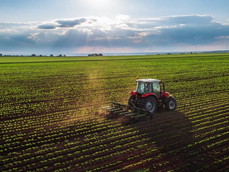 Piden se aumente el presupuesto al sector agropecuario