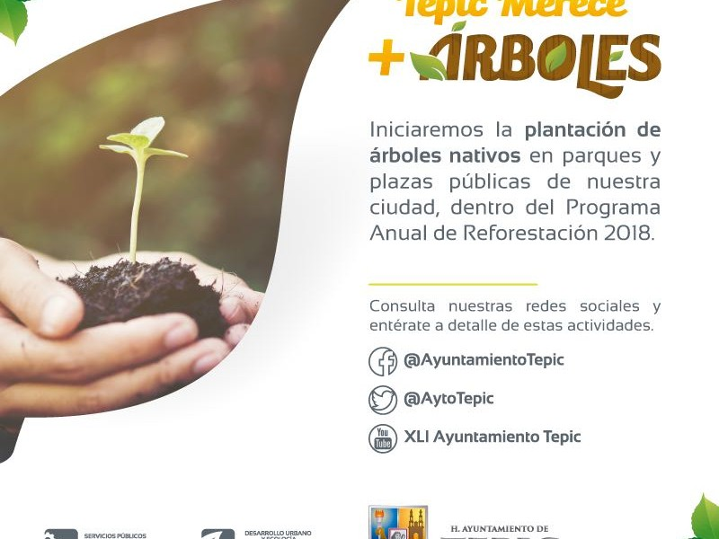 Planean reforestación urbana en Tepic