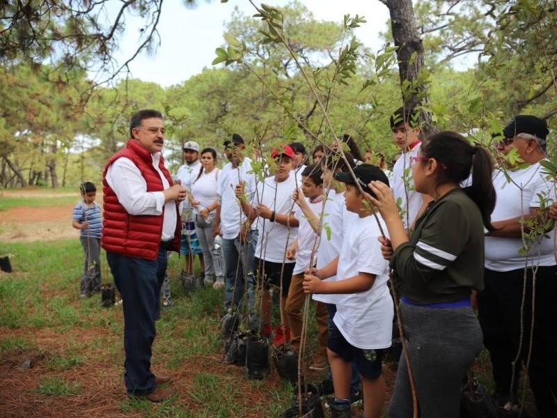 Plantarán 100 mil árboles en la Primavera
