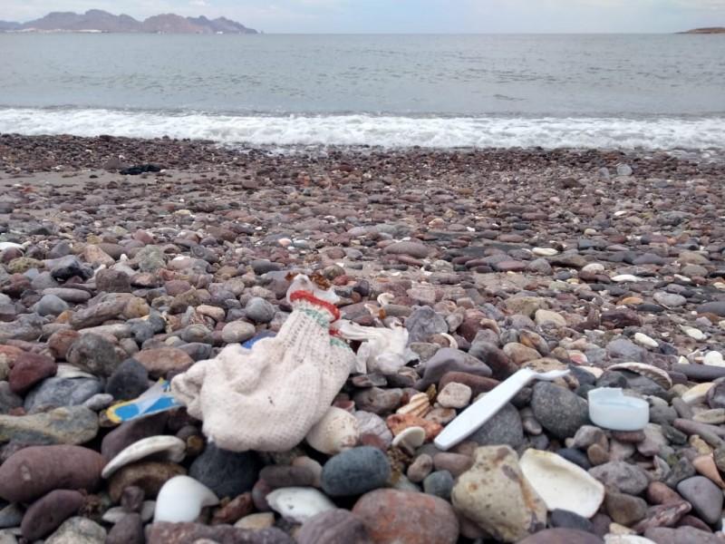 Plásticos, principal contaminante en el mar