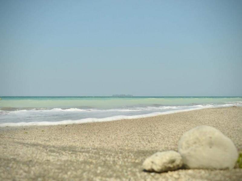 Playas limpias sorprenden a veracruzanos
