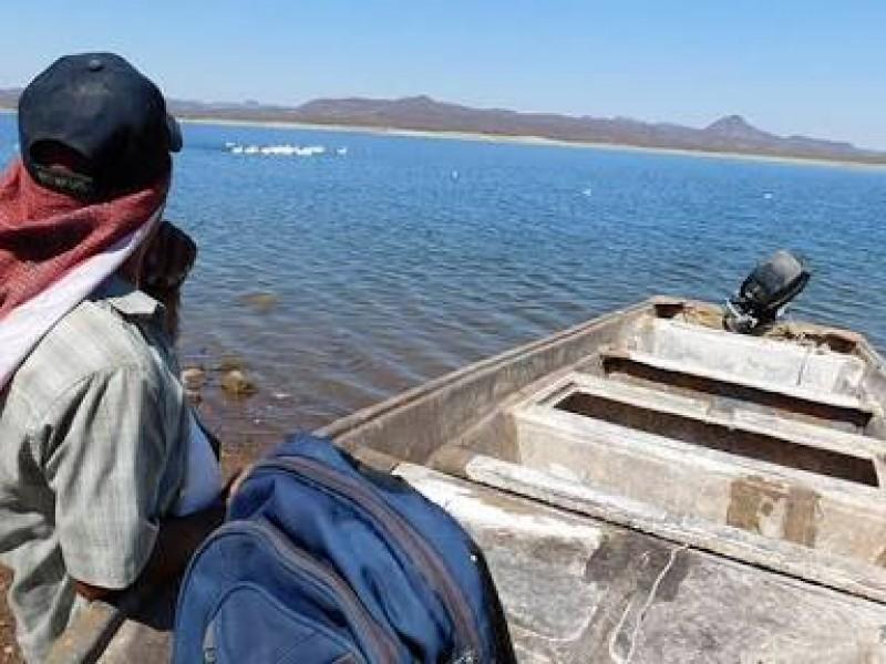 Poca pesca se registra en presa del Oviachic