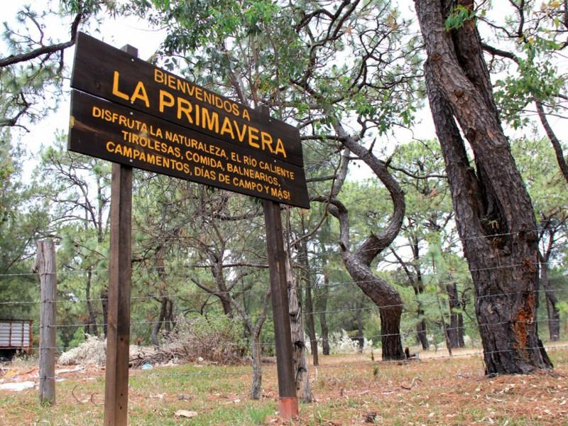 Podrían prohibir entrada al bosque La Primavera