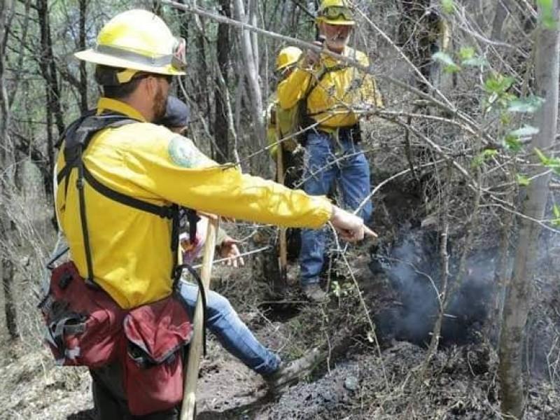 Por concluir temporada de incendios forestales en Michoacán