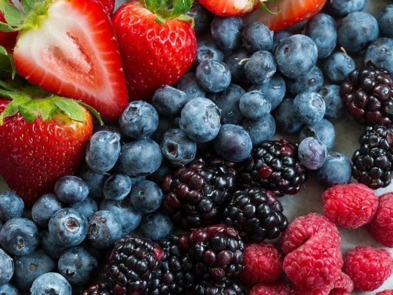 Por contingencia sanitaria, reprograman la expo berries 2020 en Zamora