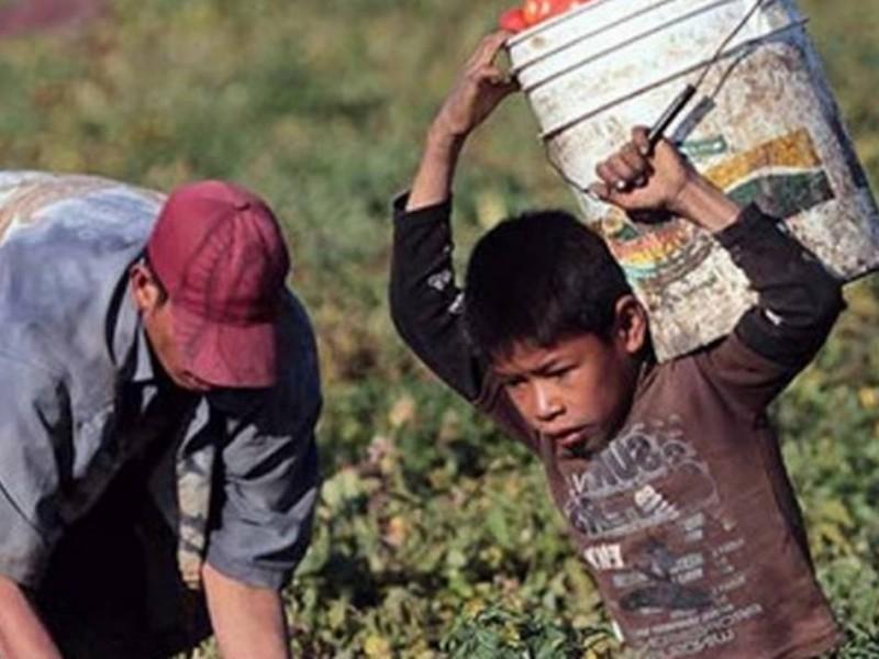 Por pandemia, 2.5 millones de niños entrarían a mercado laboral