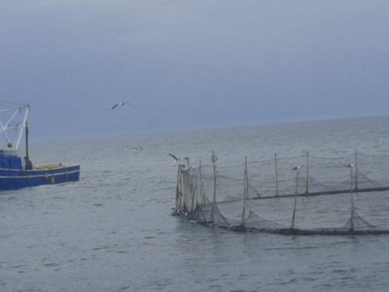 Por semáforo rojo, prohíben navegación de embarcaciones  en Topolobampo