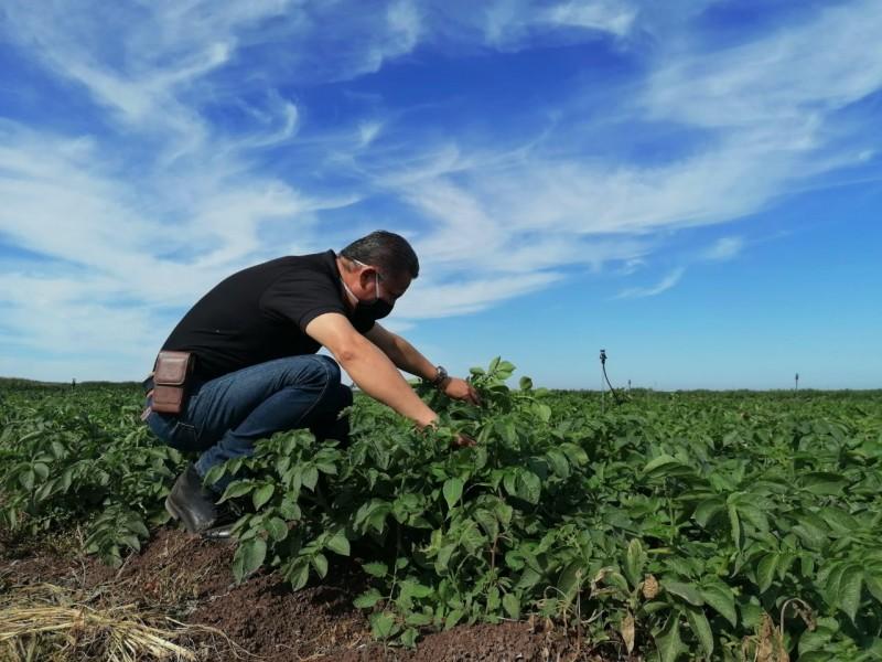 Porque la agroindustria no para, SEFERSSA estará presente en ExpoCeres