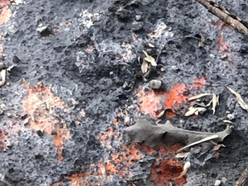 Posible actividad volcánica en La Primavera