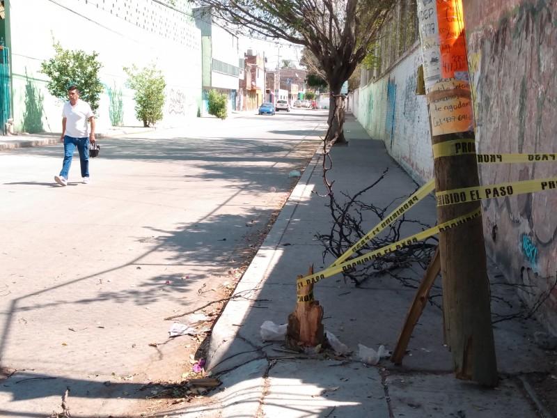 Poste de telecomunicaciones peligroso en calle Alfalfa
