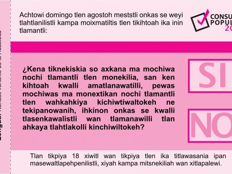 Pregunta de Consulta Popular fue traducida a 10 lenguas indígenas