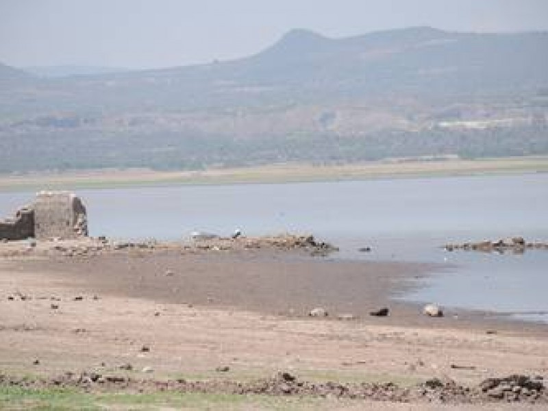 Presas de Querétaro afectadas por sequía