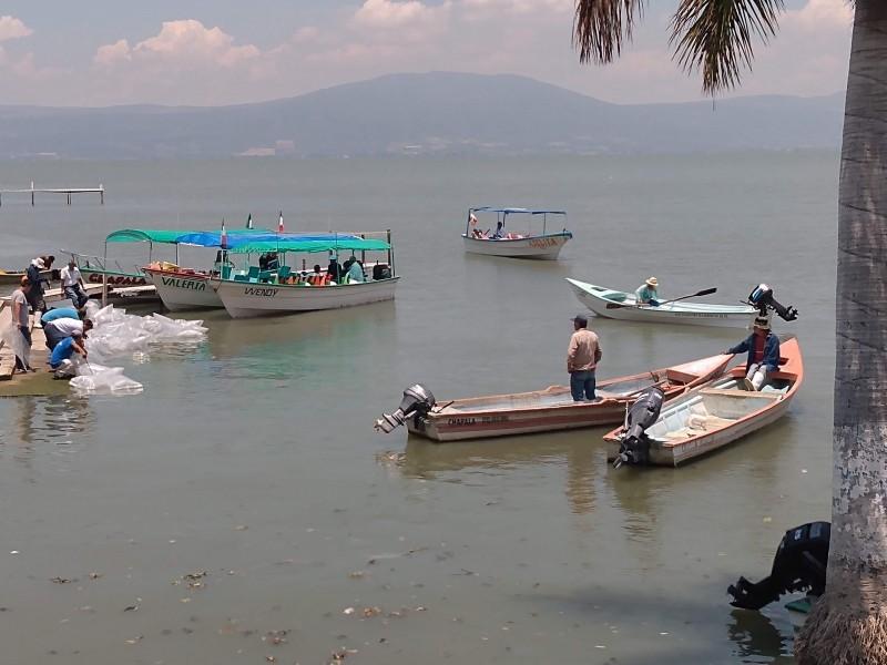 Presentan reactivación para rivera de Chapala