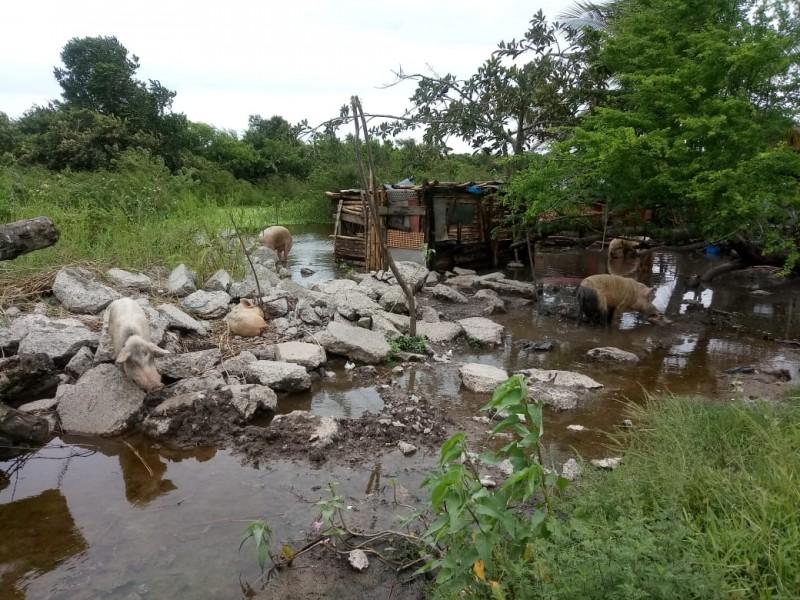 Prevalece Riesgo de Inundación en Asentamientos Irregulares