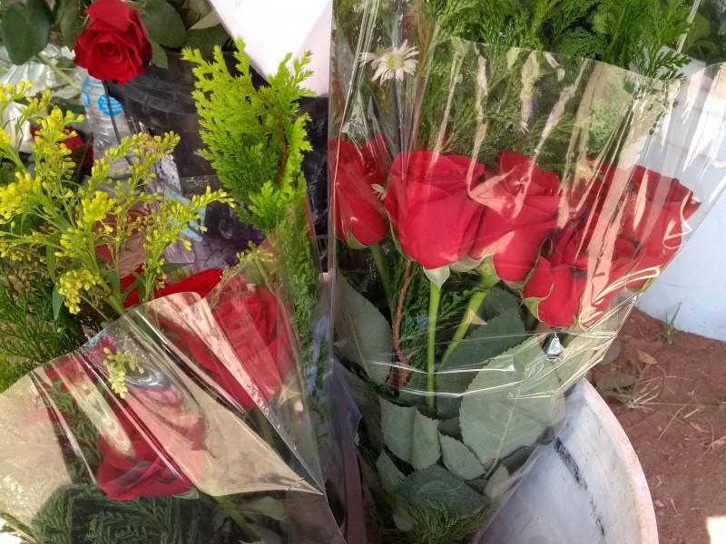 📹Prevén floristas ligero o nulo incremento a flores