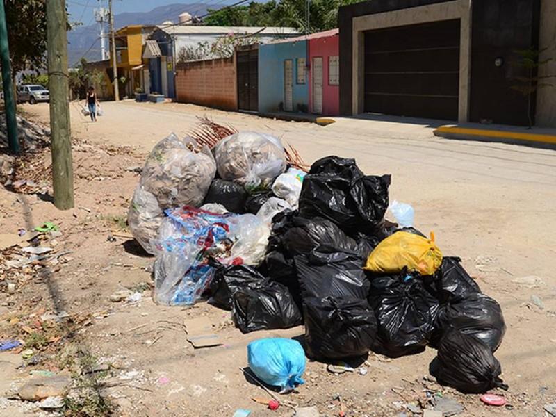 Problema de basura fuera de horario una constante