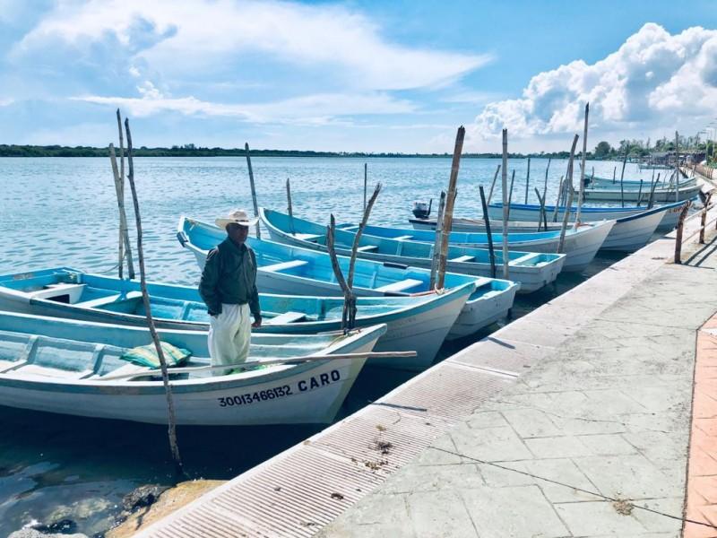 Procede demanda contra cooperativa de pesca