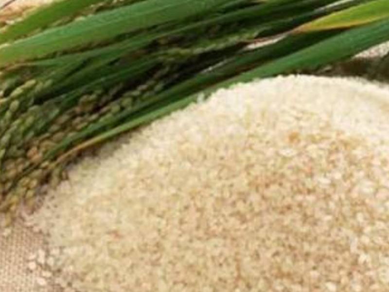 Producción de arroz a la baja