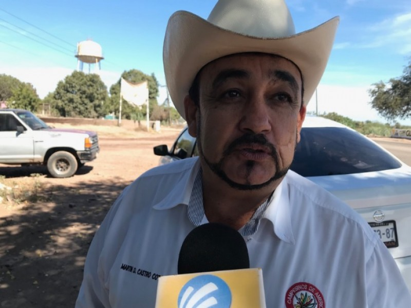 Productores aplauden acuerdo México- EU
