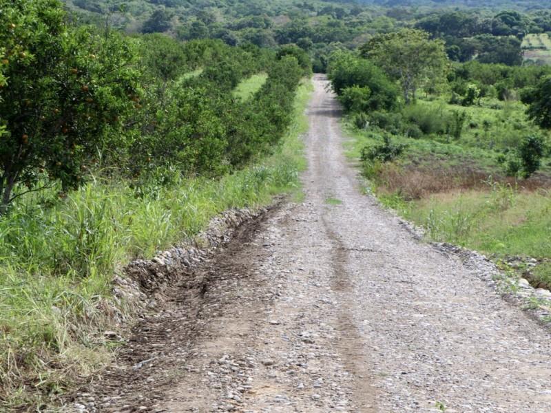 Productores agrícolas denuncias afectaciones en caminos saca cosecha